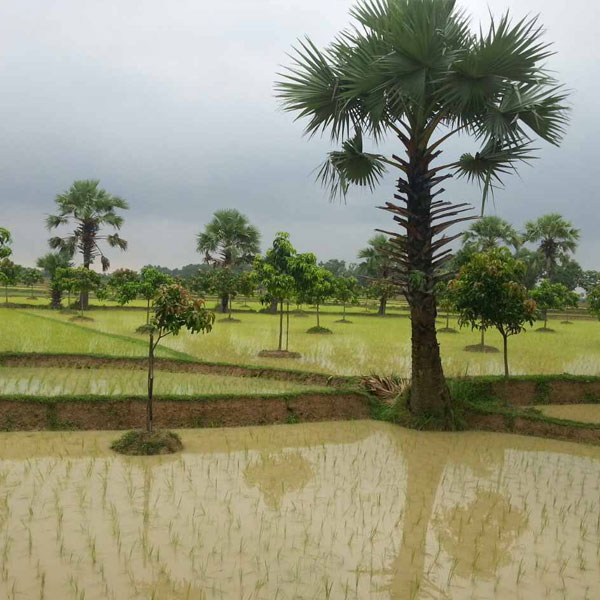 bangladesh_slider3